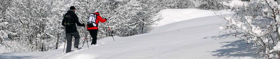 Location Ski de rando / randonnée - Raquette à neige poudreuse
